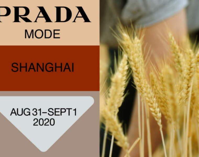 Prada Mode Shanghai: upcoming 5th edition